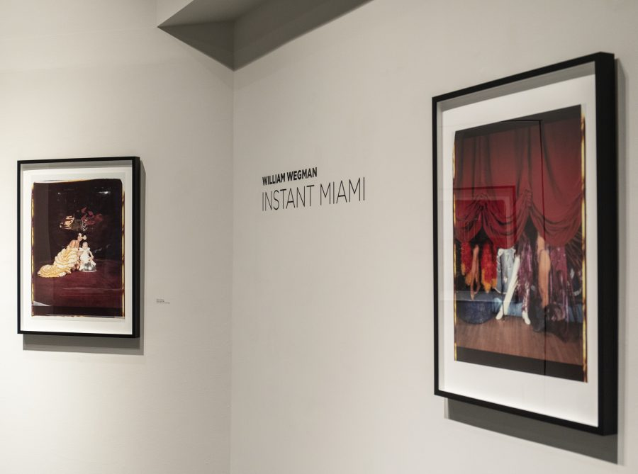 William+Wegman+exhibits+his+collection+instant+Miami+at+the+Williams+Arts+Center+%0A%28Photo+by+Elle+Cox+21%29