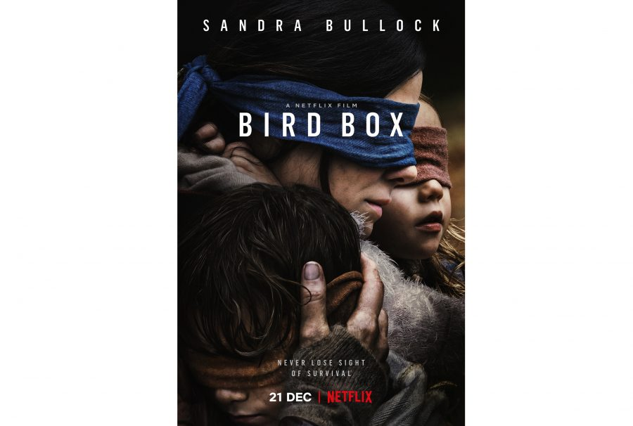 In+Bird+Box%2C+Sandra+Bullock+keeps+the+film+grounded+in+reality+with+another+top-notch+performance.+%28Photo+courtesy+of+IMDb.com%29